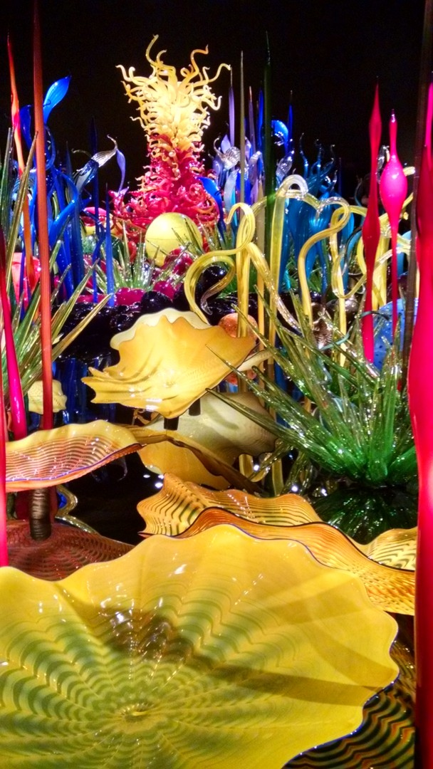 Taken at Chihuly garden glass exhibit. Seattle, WA.